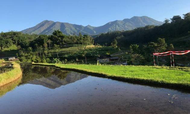 Lingkungan Alam Desa Kebrengan berupa sawah dan pegunungan