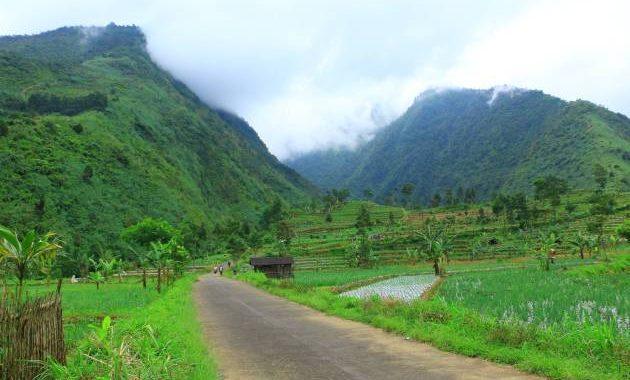 Pemandangan yang bisa disaksikan dari area Air Terjun Sikarim