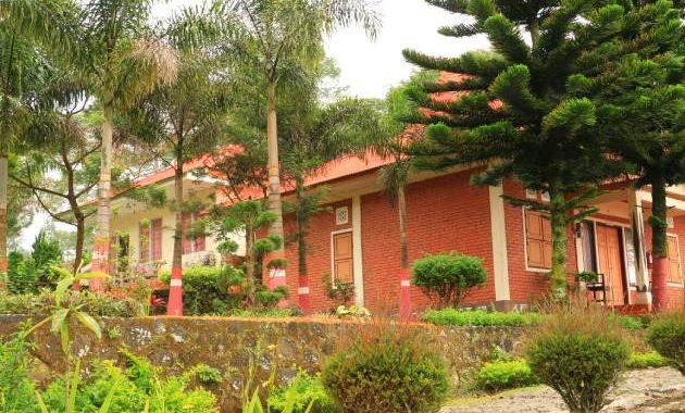 Villa perkebunan Teh Tambi terletak di area perkebunan teh